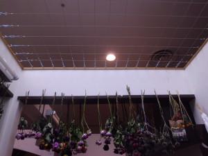 After:ドライフラワーを吊るすためのワイヤーを設置。